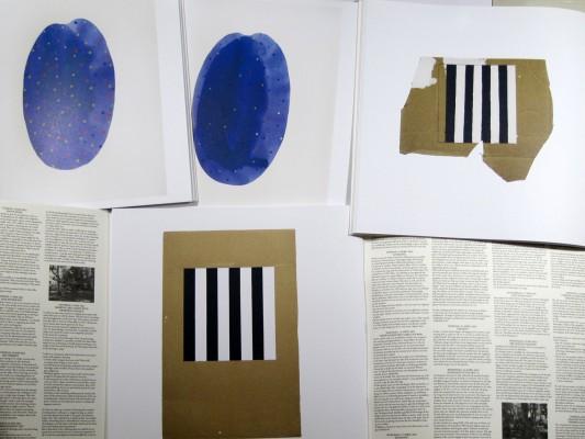 Saskia Janssen artist residency Het Vijfde Seizoen, courtesy Ellen de Bruijne PROJECTS